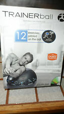 Illustrated Trainer Ball Core Stability 65cm 12 Excercise Printed 400lb DVD New