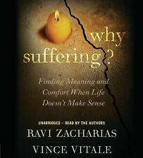 Why Suffering?: Finding Meaning and Comfort When Life Doesn't Make Sense, Vitale