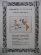 Karibik - Grenadinen von Saint Vincent : Zugvögel / Weiße Sichler ( Eudocimus )