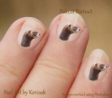 Polecat or Ferret 24 Unique Designer Nail Art Stickers