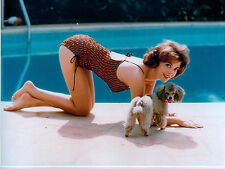 Rare Still Natalie Wood  Color Closeup STUNNING POOL WITH HER DOG WOW