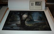 Jesse Barnes EVENING ASCENT - Limited Edition S/N unframed paper MINT Deer Lake