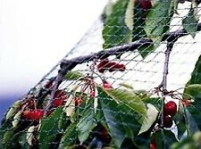 (2m x 10m) Garden Netting Plan Tree Fruit Bird Pond