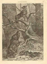 Wild Boar Defends Pack From A Predator, Vintage 1878 French Antique Art Print