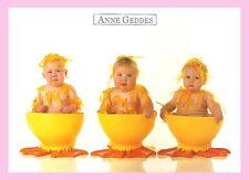CPM- Anne - GEDDES - Bébé dans coquetier