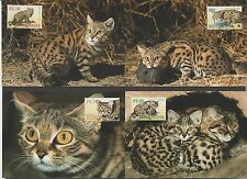 Botswana 2005 WWF maximum card set of 4 - wild cats - animals