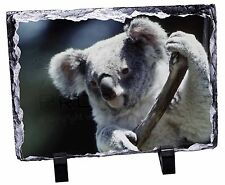 Cute Koala Bear Photo Slate Christmas Gift Ornament, AKB-1SL