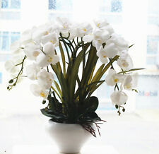 Orchid flower real touch artificial arrangement white orchids Phalaenopsis