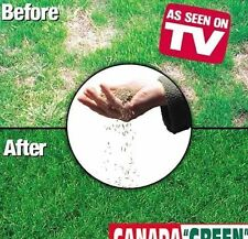12 LB Canada Green Grass Seed (freshly Harvested And Tested For The Season)