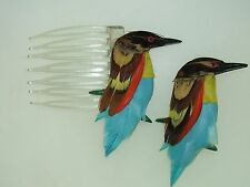 VINTAGE 1940'S MADE IN GREAT BRITAIN REAL BIRD FEATHER PINS! AMAZING COLORS!