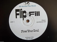 "FLIP & FILL - FREE YOUR SOUL 12"" RECORD - ALL AROUND THE WORLD - 12DJ GLOBE 203"