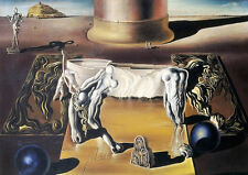 Framed Print - Salvador Dali Invisible Sleeping Woman Horse Lion 1930 (Painting)