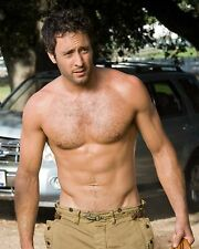 Alex O'Loughlin / Hawaii Five-0 8 x 10 GLOSSY Photo Picture