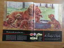 1948 Chrysler Plymouth Dealer Ad  Service  Irish Setter Mom & Puppies Dogs Bath