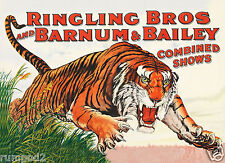 Vintage Circus Poster /Ringling Brothers Barnum & Bailey/Tiger/Big Top/16x22