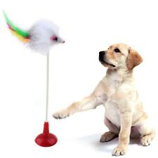 Funny Pet Feather False Mouse Bottom Sucker Cat Kitten Playing Scratch Toy