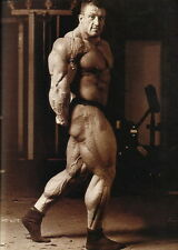 "024 Dorian Yates - English Top Bodybuilder Mr Olympia 24""x34"" Poster"