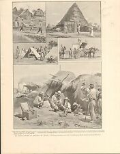 Paludism Malaria Red Cross Roma Rome Italy FRANCE GRAVURE ANTIQUE OLD PRINT 1901