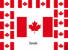Assortiment lot de10 autocollants Vinyle stickers drapeau Canada