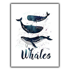 Whales humpback blue Metal Wall Plaque Sign quote art nature sea oceans