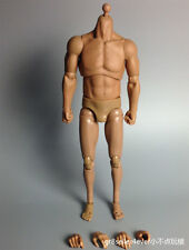 1/6 Scale Male the bulk big Muscular Figure Body fit Schwarzenegger Bane Stallon