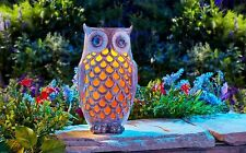 Solar Powered LED Ceramic Owl, Outdoor Decor, Night Light Yard Garden New