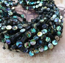 Fil de 60 arc en ciel abalone beads 6mm round paua shell beads