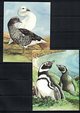 British CW: Falkland Islands: 2 Picture Post Cards - Island Birds NH - Lot#4/23