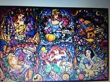 DISNEY PRINCESS 1 STAINED GLASS cross stitch kit