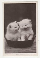 Cats, Bubble & Squeak, 1912 Rotary RP Postcard, B371
