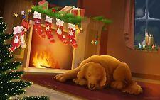 Christmas Holiday Decoration Xmas Santa Claus Dog Stockings Fridge Magnet #78