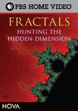 NOVA: Fractals - Hunting the Hidden Dimension (2009, DVD NEUF)