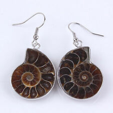 Natural Silver Plated Ammonite Fossil Slice Shell Gemstone Dangle Hook Earrings