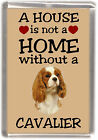 "Cavalier King Charles Spaniel Fridge Magnet ""A HOUSE IS NOT A HOME"" -2 Starprint"