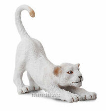 CollectA 88550 White Lion Cub Stretching - Wildlife Animal Toy Model Replica NIP