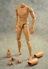 HOT VERSION 4.0 CUSTOM NARROW SHOULDER 1/6 ACTION FIGURE BODY TOYS TTM18 Head
