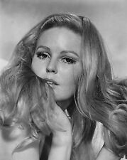 "Veronica Carlson Hammer Horror 10"" x 8"" Photograph no 7"