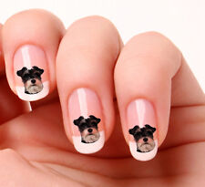 20 Nail Art Stickers Transfers Decals #584- Dog Miniature Schnauzer