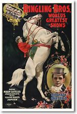 Ringling Bros World's Greatest Shows - Vintage Art Circus Reproduction POSTER