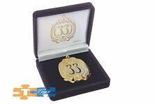 """BLUE & BLACK PIN Official Disneyland Club 33 'Large Version' Collectible """"NEW"""""""