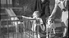 Old b/w photo negative beautiful young girl and collie dog playpen
