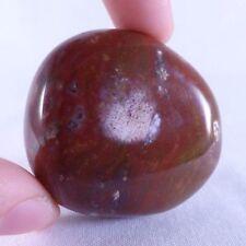 Fossilized Petrified Podocarpus Wood Polished Freeform - 45mm, 59g