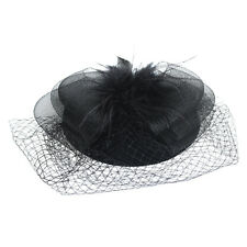 Black Feather Organza Mesh Veil Hair Clip Fascinator Party Hot