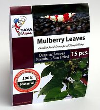 TAYA Mulberry Leaves (15 pieces) - Crystal Red Cherry Shrimp High Nutrition Food