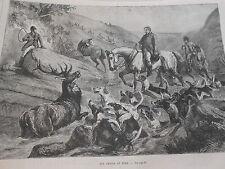 Gravure 1872 - Une Chasse au Cerf