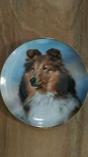 Shetland Sheepdogs, Perfect Pose Collector Plate