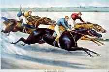 Desperate Finish Horse A4 Photo Print 001