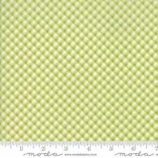 Moda Brenda Riddle Acorn Quilts Fleurs Pinstripe Gingham Fabric Sprout 13635-12