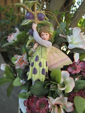 Cicely Mary Barker SLOE Flower Fairy Ornament Figurine RETIRED! BNIB #86984