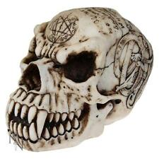 NEMESIS NOW - OCCULT - 18.5cm SKULL FANTASY ORNAMENT